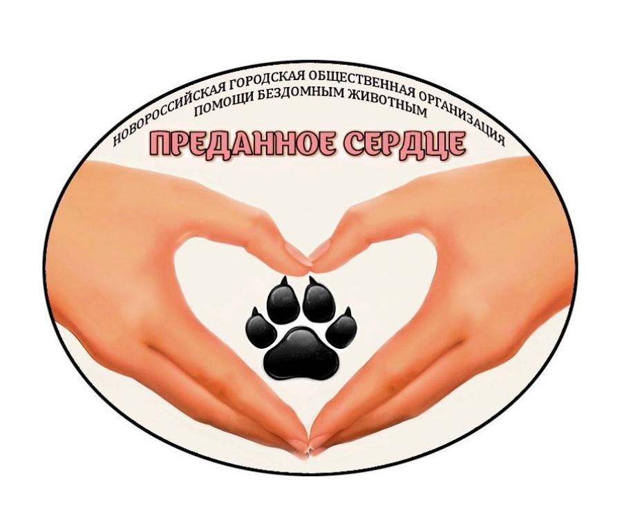 Преданное сердце - Новороссийская городская общественная организация помощи бездомным животным